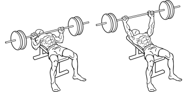 1024px-Bench-press